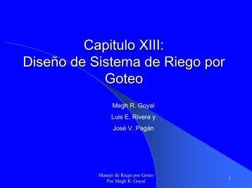 Diseño de Sistema de Riego por Goteo