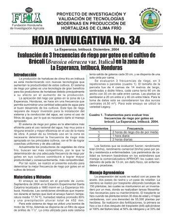 HOJA DIVULGATIVA No. 34 - FHIA