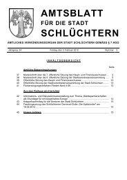 Amtsblatt Nr. 5 vom 03. Februar 2012 - Stadt Schlüchtern