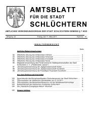 Amtsblatt Nr. 10 vom 11. März 2011 - Stadt Schlüchtern