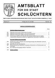 Amtsblatt Nr. 25 vom 19. Juni 2009 - Stadt Schlüchtern