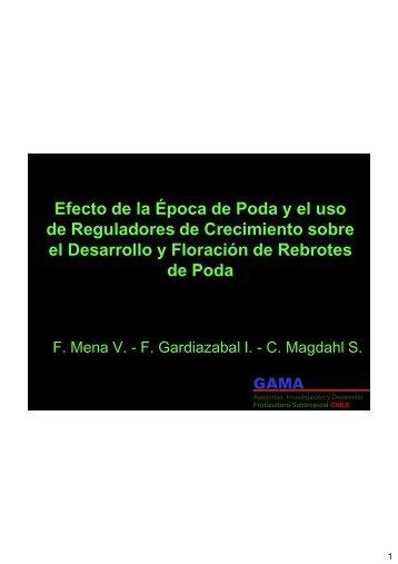 PRESENTACIÓN: Efecto de la Época de Poda y el uso de ...