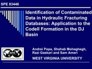 Identification of Contaminated Data in Hydraulic Fracturing - Shahab ...