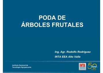 PODA DE ÁRBOLES FRUTALES - INTA