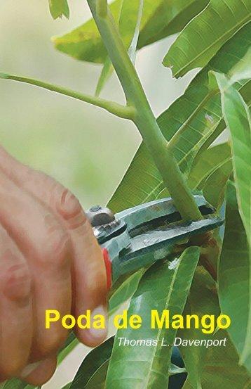 Poda de Mango - Cluster del Mango Dominicano