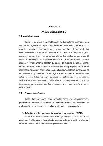 CAPITULO V ANALISIS DEL ENTORNO 5.1 Análisis externo Pudo ...