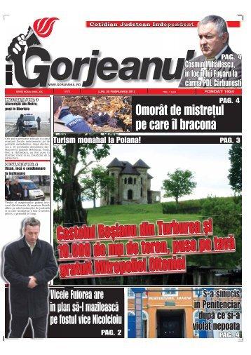 Castelul Roşianu din Turburea şi 10.000 de mp de teren, puse pe ...