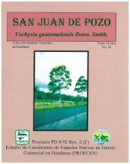 San Juan de Pozo, Vochysia guatemalensis Donn. Smith. - ITTO