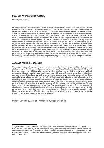 Poda del aguacate en Colombia - VII World Avocado Congress 2011