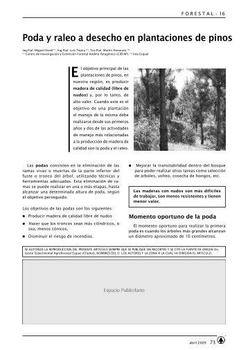 Poda y raleo a desecho en plantaciones de pinos - INTA