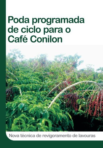 Poda programada de ciclo para o Café Conilon - Incaper