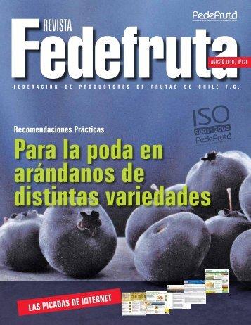 Recomendaciones Prácticas Para La Poda En ... - Fedefruta