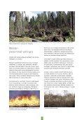 Pidä huolta metsästäsi - Tapiola - Page 3