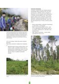Pidä huolta metsästäsi - Tapiola - Page 5