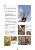 Pidä huolta metsästäsi - Tapiola - Page 7