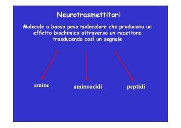 Microsoft PowerPoint - neurotrasmettitori.ppt - Fisiokinesiterapia.biz
