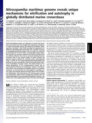 Nitrosopumilus maritimus genome reveals unique - de la Torre ...