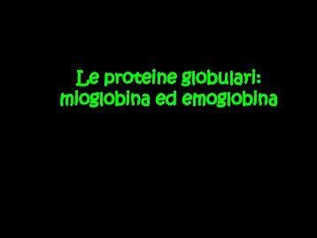 Le proteine globulari: mioglobina ed emoglobina - Scuola1024