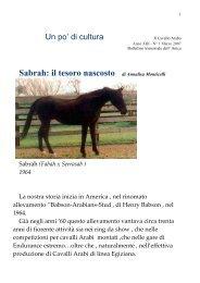 Sabrah: il tesoro nascosto Il Cavallo Arabo Anno XIII - N° 1 Marzo ...