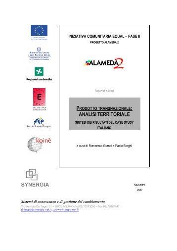 Sintesi dei risultati del Case Study italiano - Synergia