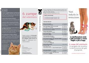 6 zampe dal veterinario - Amici animali Osimo