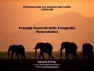 Edoardo Di Pisa - Principi Fondamentali Fotografia Naturalistica.pdf
