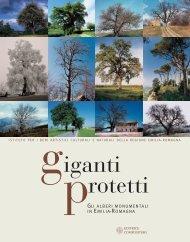 Giganti protetti - Istituto per i Beni Artistici, Culturali e Naturali della ...