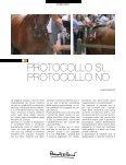 Dicembre 2012 - Contrada della Lupa - Page 6