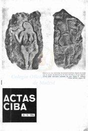 Actas Ciba en PDF - CODEM