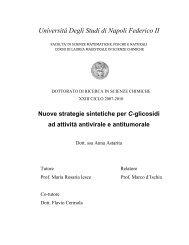 Università Degli Studi di Napoli Federico II - FedOA - Università ...