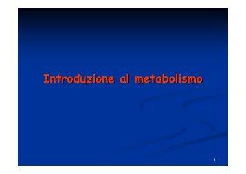 introduzione al metabolismo.pdf