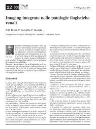 Imaging integrato nelle patologie flogistiche renali