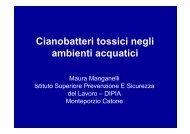 Cianobatteri tossici negli ambienti acquatici - Istituto Superiore di ...