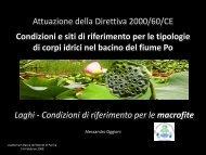 Pressioni e impatti sulla flora macrofitica - Autorità di Bacino del ...