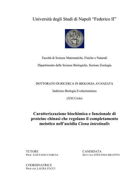 """Università degli Studi di Napoli """"Federico II"""" - FedOA - Università ..."""