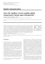 Does the Agulhas Current amplify global temperatures during ...