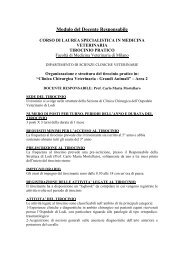 Clinica chirurgica veterinaria - grandi animali - Lodi - Prof. Mortellaro