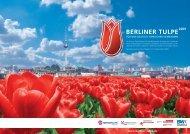 BERLINER TULPE - BEYS MARKETING & MEDIA