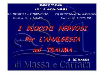 I blocchi nervosi per l'anelgesia nel trauma