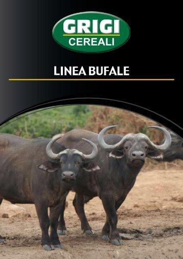 """Scarica la presentazione """"Bufale"""" in pdf - Nuovomolinodiassisi.it"""
