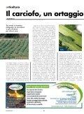 Numero 2 - 2011 Primavera - Cooperativa Agricola di Legnaia - Page 4