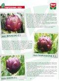 Numero 2 - 2011 Primavera - Cooperativa Agricola di Legnaia - Page 6