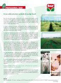 Numero 2 - 2011 Primavera - Cooperativa Agricola di Legnaia - Page 7