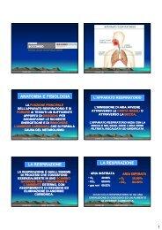 Primo Soccorso - Lezione 5 - Patologie ... - Massimo Franzin