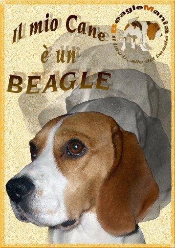 Il mio cane è un Beagle - BeagleMania