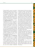 SELVALTA - Comitato Amici del Palio - Page 7