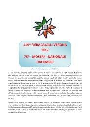 report tecnico sulla 75° mostra nazionale ... - Haflinger Italia