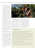 Per pesche e nettarine un avvio incoraggiante - Ermes Agricoltura - Page 2