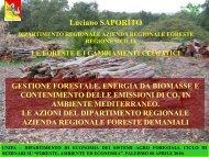 Le foreste e i cambiamenti climatici - Università di Palermo