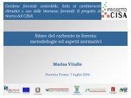 metodologie ed aspetti normativi - Centro CISA